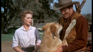 old Dorothy-in-Old-Yeller-dorothy-mcguire-10011259-853-480