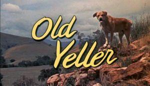 old-yeller-003