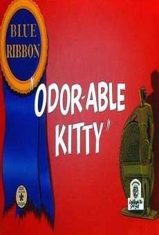 odor-able-kitty